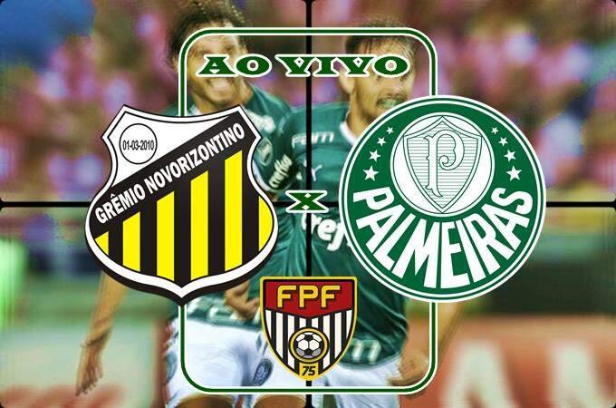 Jogo Novorizontino x Palmeiras ao vivo online. Foto/Montagem