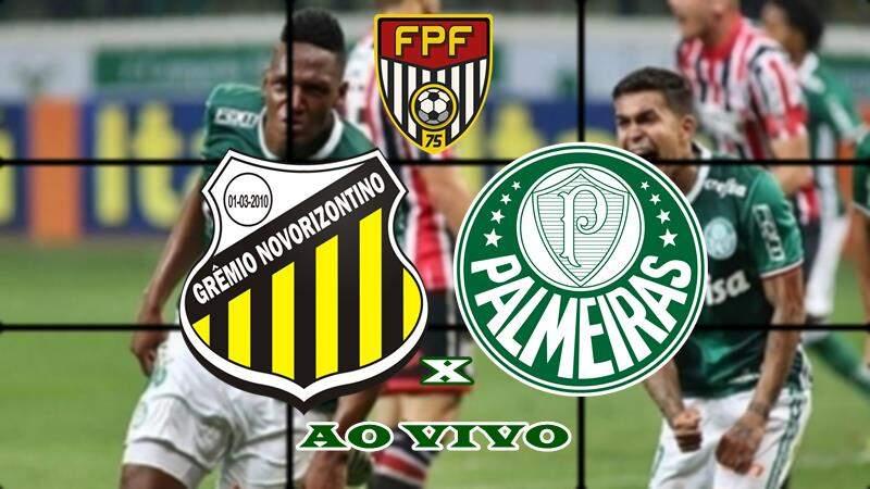 Onde vai passar o jogo Palmeiras x Novorizontino ao vivo. foto/Montagem
